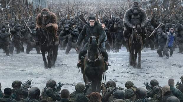 Все как улюдей: как два клана шимпанзе устроили 4-летнюю кровавую войну