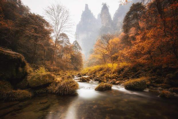 Скалы Улинъюань: чудо национального парка Чжанцзяцзе