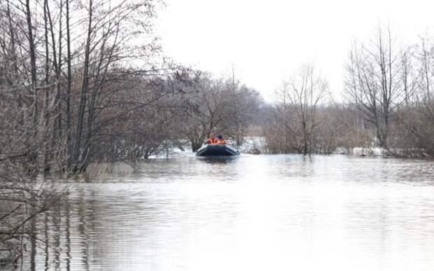 В Рязанской области продолжает понижаться уровень воды в Оке