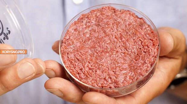 Мясо из пробирки: как его делают, сколько оно стоит и почему это важно