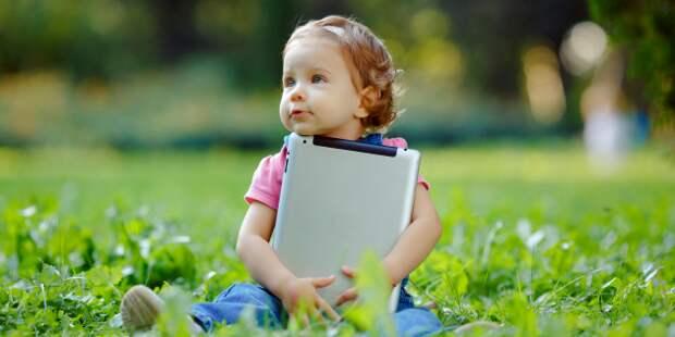 Lyashenko Egor/Shutterstock.com