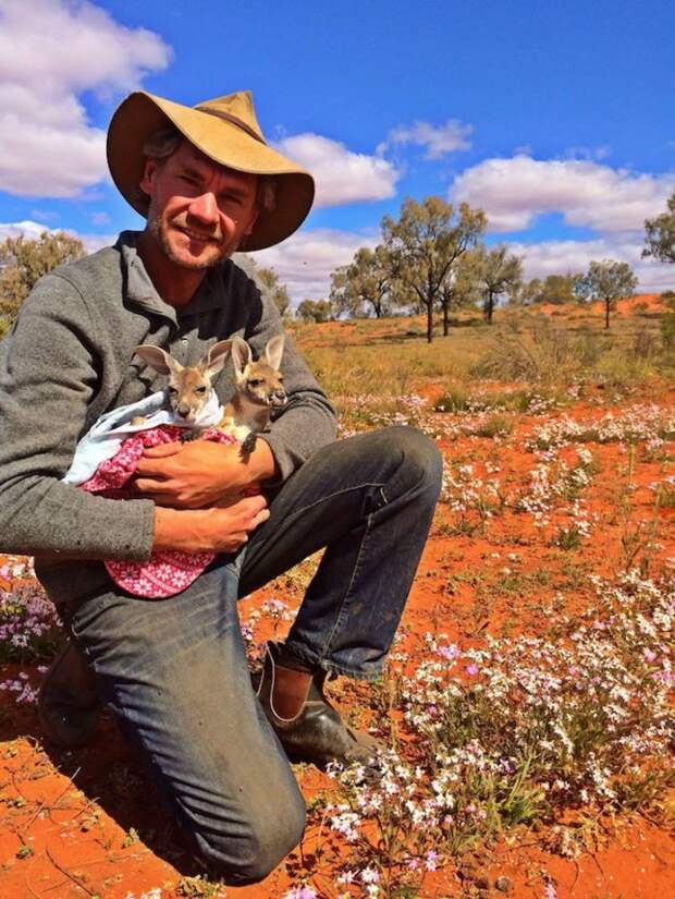 Суррогатный «родитель» для кенгурят Крис Барнс