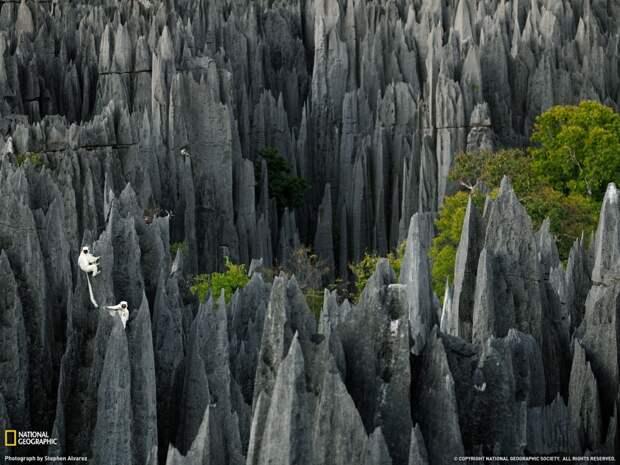 20  инопланетных пейзажей Земли