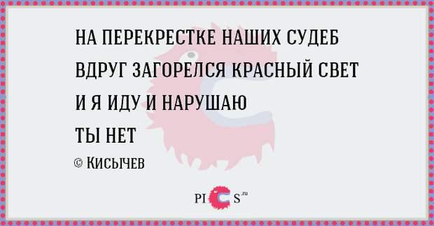 porowki18