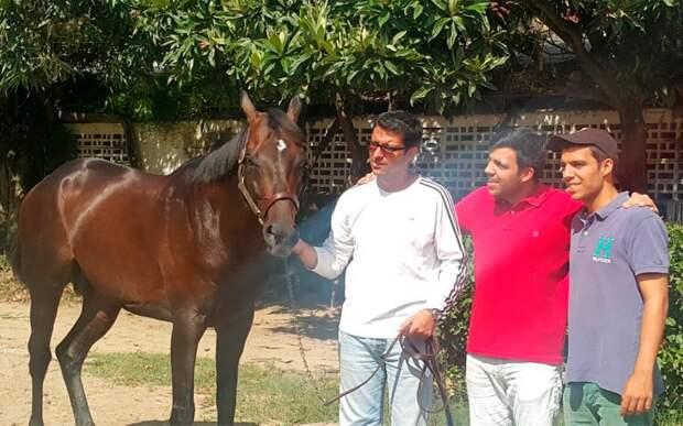 ВВенесуэле похитили исъели коня, побеждавшего впрестижных соревнованиях поскачкам