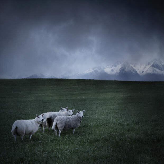 Холодные пейзажи северной красавицы - Норвегии
