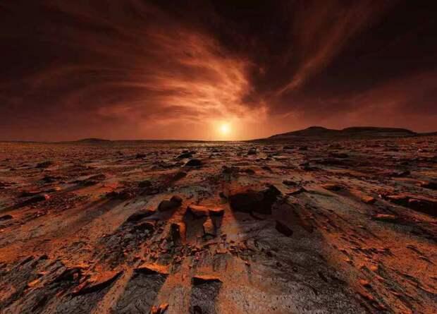 Следы жизни: кто они – переселенцы с Марса?