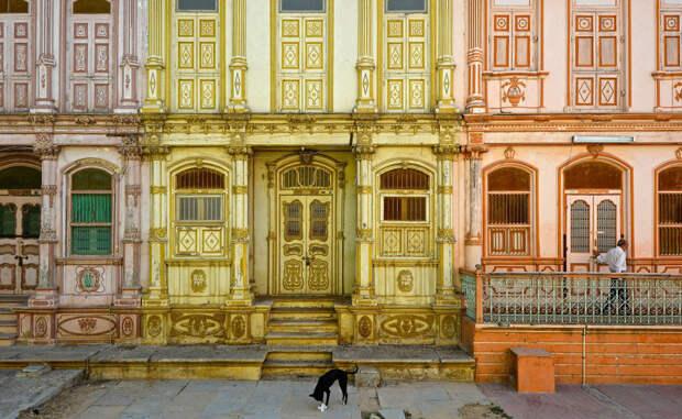 Сиддапур, Гуджарат, Индия Фотограф: Аашит Десаи