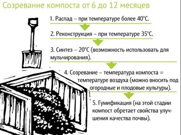 5 этапов создания правильного компоста