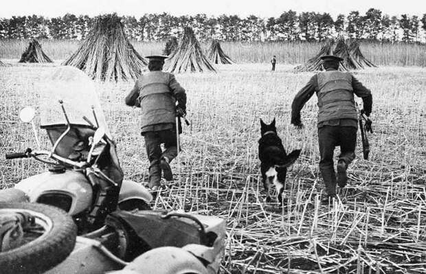 Советская милиция против наркомафии. 1950-е годы.