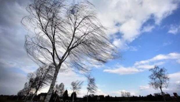 «Желтый» уровень погодной опасности объявили в Московском регионе на 21–23 апреля