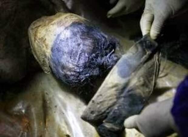В Китае обнаружена древняя мумия женщины