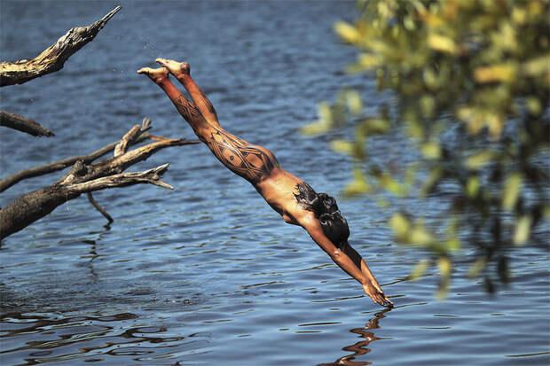 МИР ВОКРУГ.  Амазонские джунгли - настоящий магнит для экстремалов