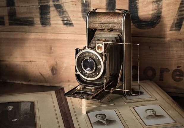 Лианозовский парк продолжает прием фотографий для проекта «Вернисаж Победы»