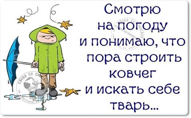5672049_1447960899_frazki1 (604x376, 53Kb)
