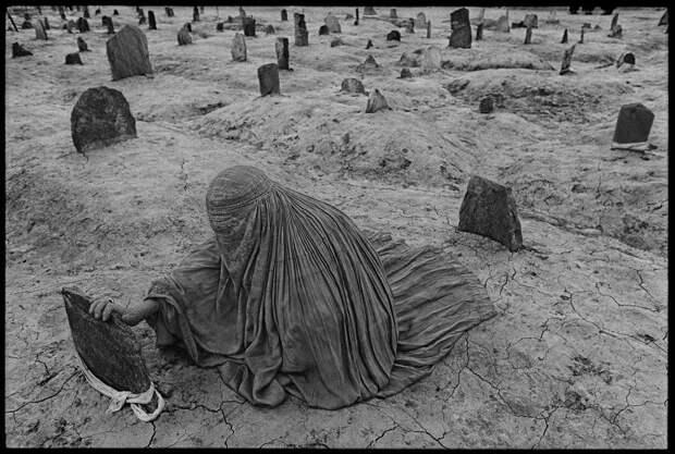 """Выставка """"Трагические последствия войны"""""""