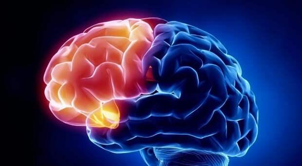 Американские учёные выяснили, как избавиться от ненужных мыслей