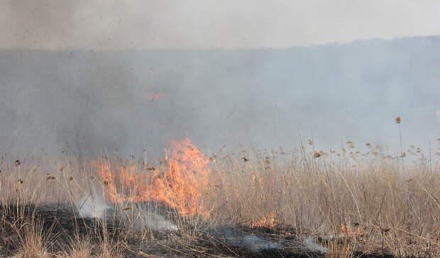 Поселку Тумнин вХабаровском крае гарантировали защиту. Отпожаров