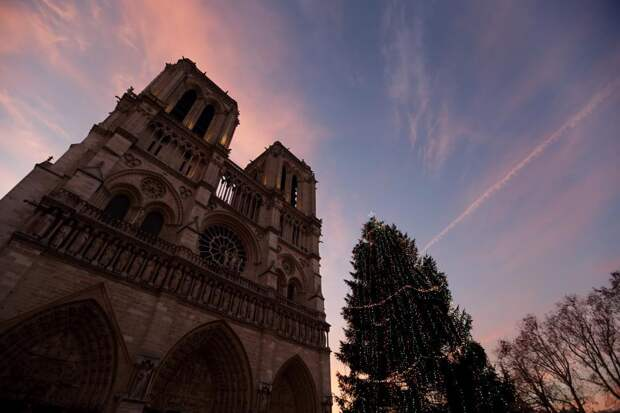 Тени Парижа