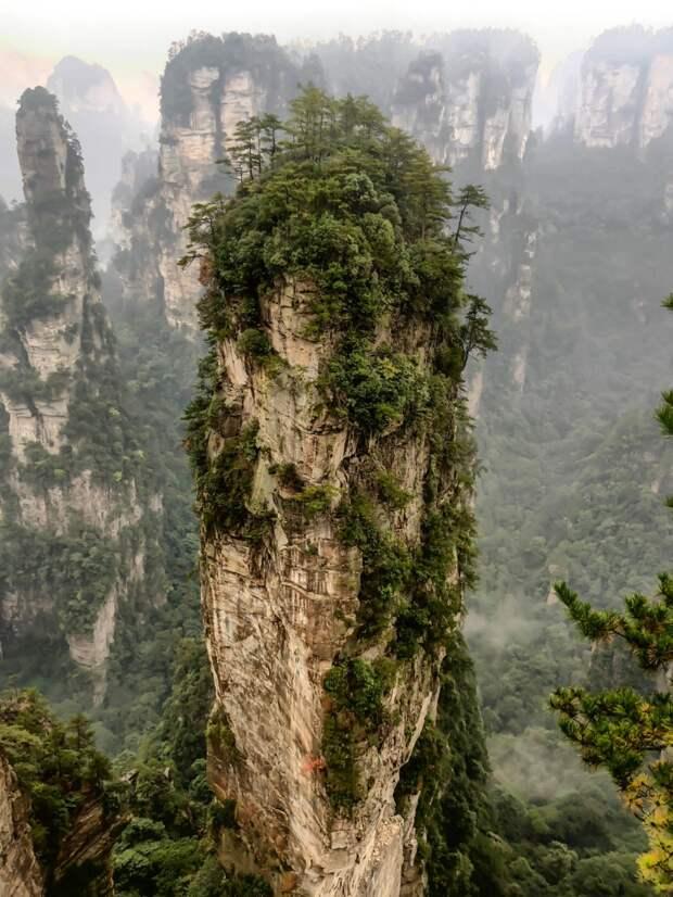Природное чудо света — самый посещаемый в мире национальный парк Чжанцзяцзе, «горы Аватар»