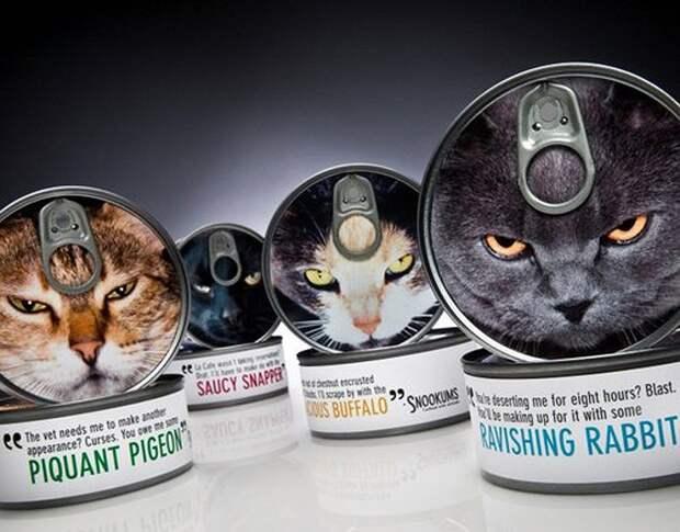 cathouse31 Дизайн для котов