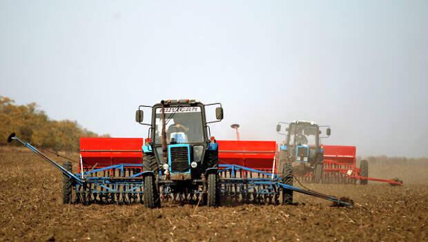 Сев пшеницы. Архивное фото