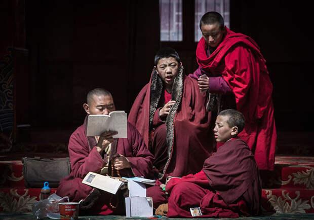 Жизнь в буддийской академии