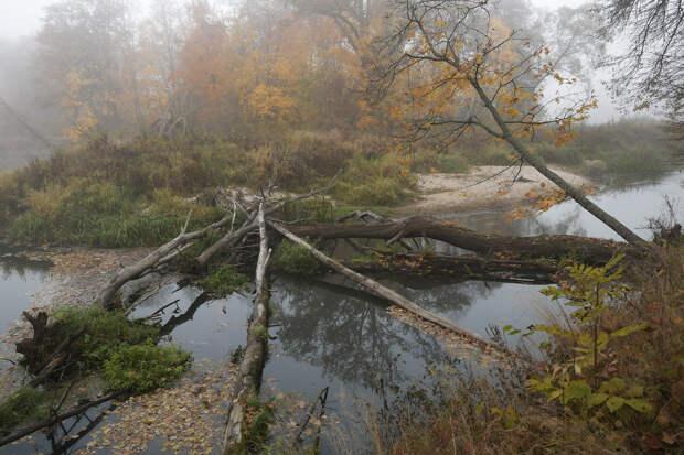 Осень на берегах Неруссы