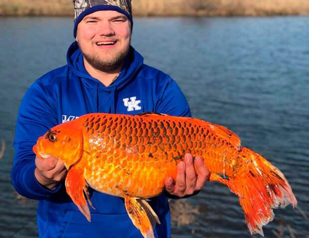 В США парень поймал сказочную рыбку