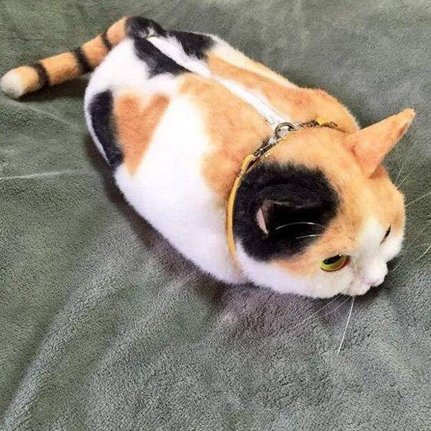 Сумки - коты