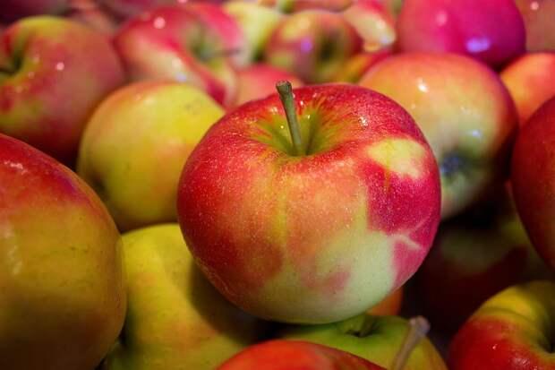 Яблоки, сливочное масло ивермишель подешевели вНижегородской области— Нижегородстат