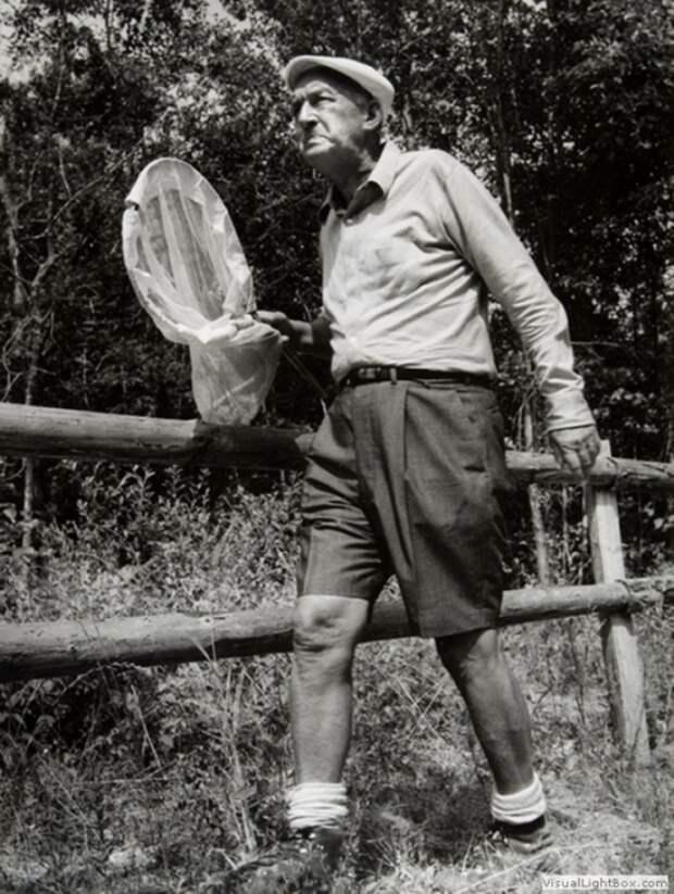 Владимир Набоков, Швейцария, 1960-1970-е.