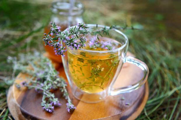 Чай из чабреца лечит кашель и простуду