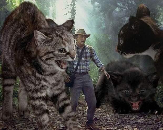 коты вместо динозавров, парк юрских котиков, кошки вместо динозавров