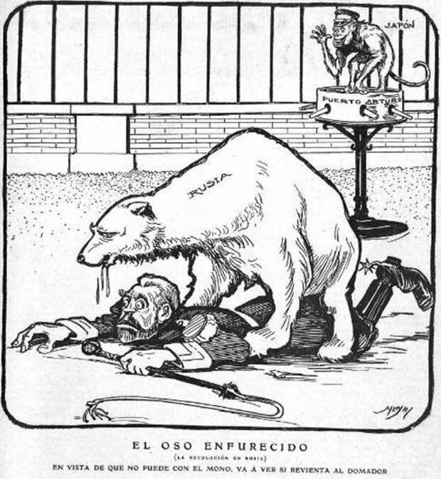 1905 Испания медведь, россия