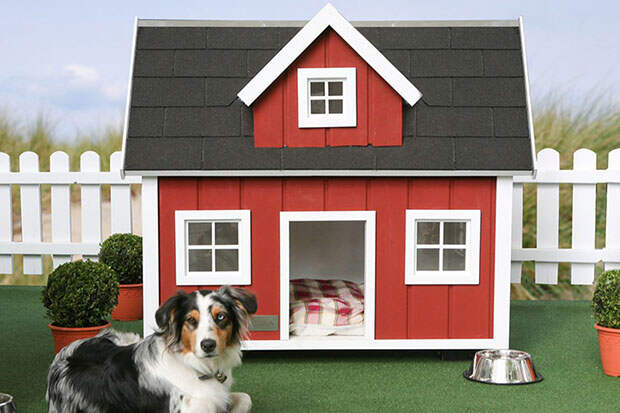LUXURIOUS-DOG-MANSIONS1