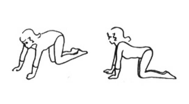 Как укреплять мышцы спины