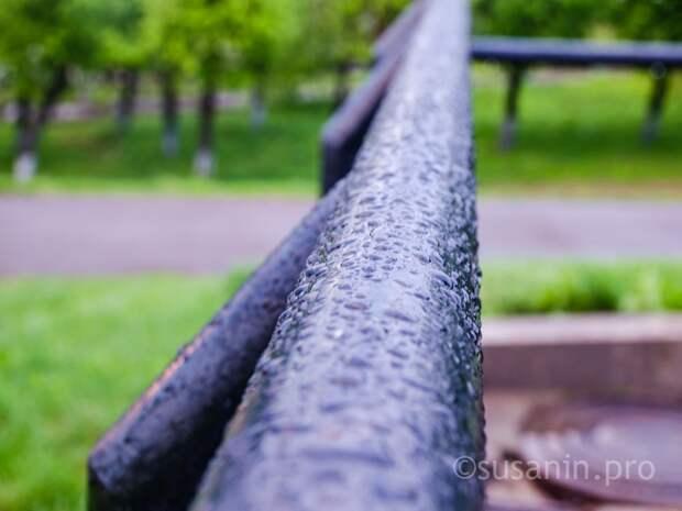 Дожди и грозы останутся в Удмуртии в начале рабочей недели