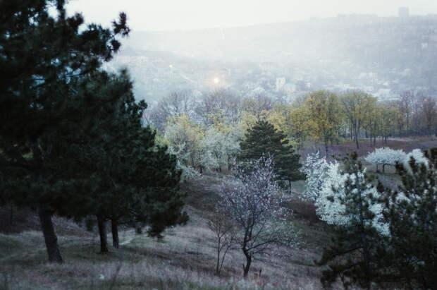 Завораживающие пейзажи Молдавии