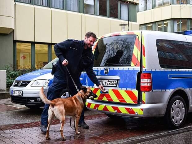 Полицейская собака помогла австрийским пенсионерам найти потерянные сбережения