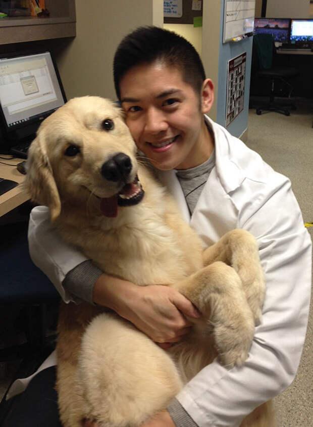 15 фотографий, доказывающих, что ветеринар — самая лучшая профессия