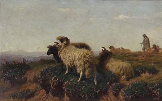 Август Фридрих Альбрехт Шенк и его овечки.