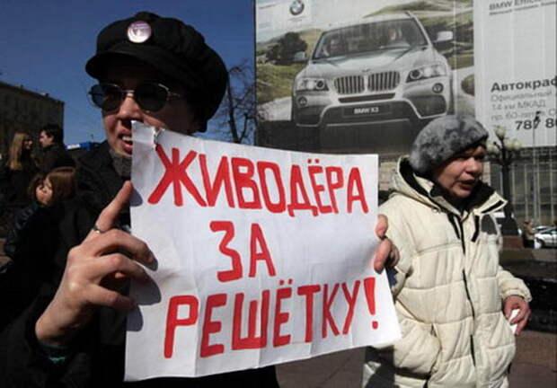 Петербургские депутаты предложили сажать догхантеров на два года