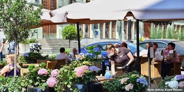 Рестораторы Москвы готовы внедрить систему QR-кодов в дневных заведениях. Фото: Ю.Иванко, mos.ru