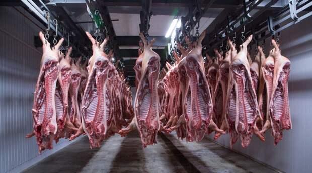 В России для сдерживания изменений климата могут ввести налог на мясо