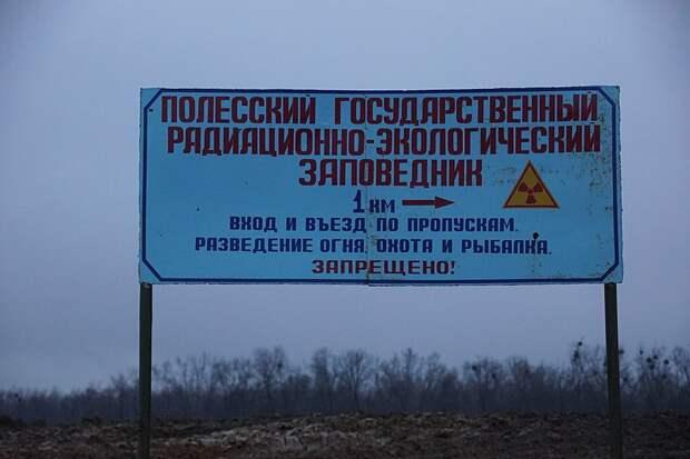 Белоруссия открыла созданную после Чернобыля зону отчуждения для туристов