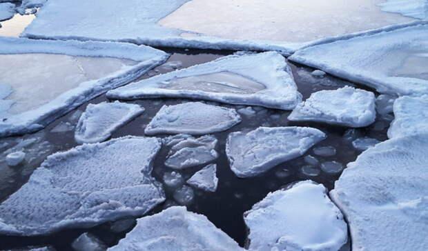 Посинему морю кзеленой земле. Спасатели сняли сольдины дрейфующую омичку