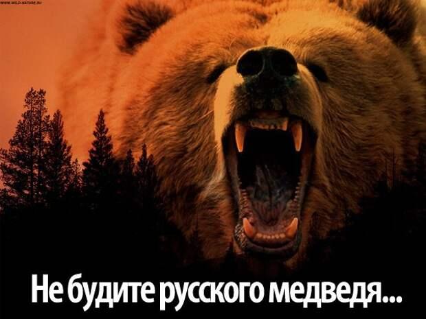Племя Медведя