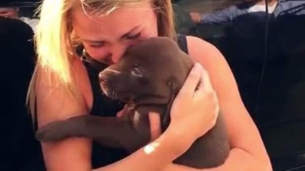 Девушка так обрадовалась подаренному щенку, что не заметила самый главный подарок