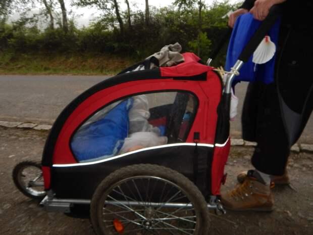 17. С панорамным обзором. детские коляски, креатив, родители